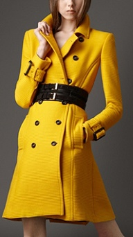 BC - Yellow Coat