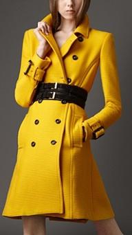 BC - Yellow Coat