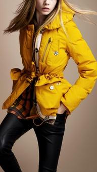 BC - Yellow Puffer