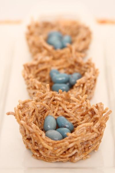 Spring Birds Nests