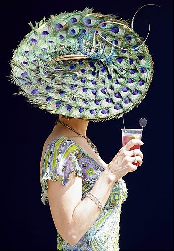 HAT - Kentucky Derby Peacock