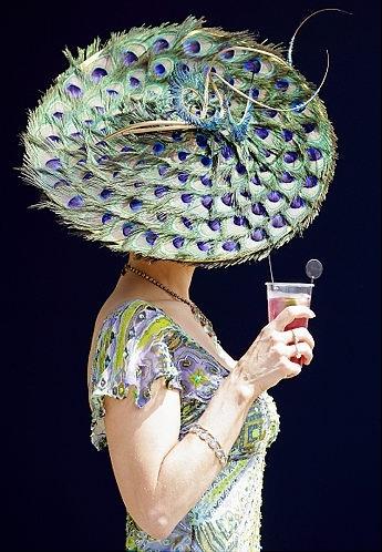 HAT - Kentucky Derby Peacock
