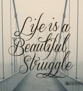 Life is a Beautiful Struggle 2