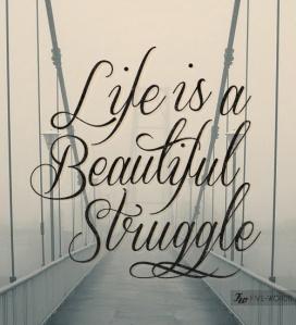 Life is a Beautiful Struggle 2