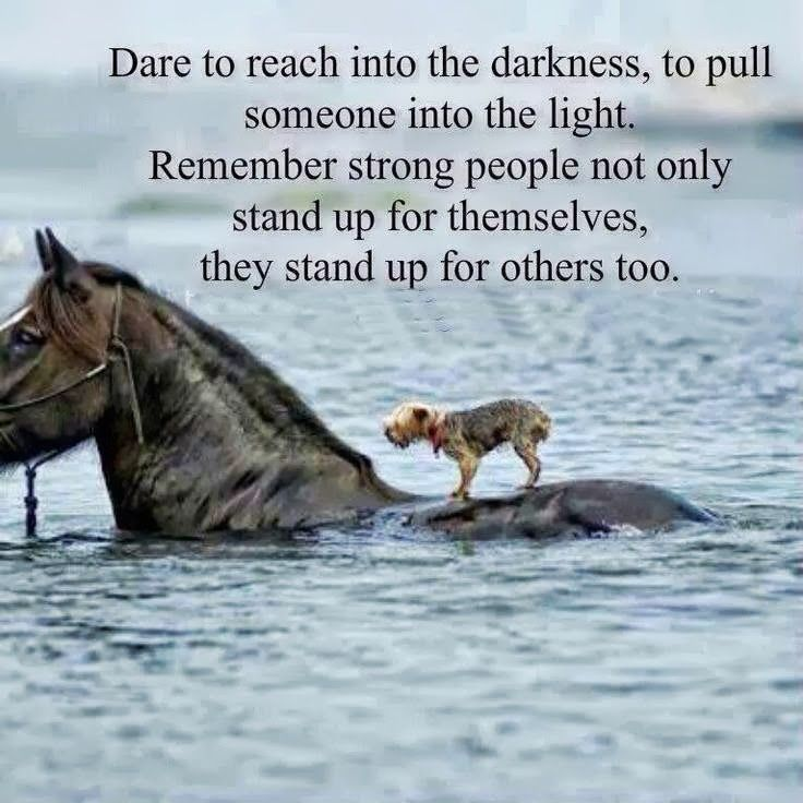Dare to reach into the darkness