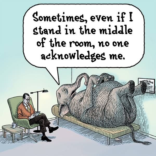 Elephant - No One Acknowledges Me Cartoon